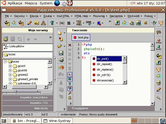 Pajączek działający na Ubuntu Linux