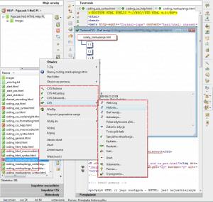 Współpraca Pajączka z systemem kontroli wersji CVS lub SVN