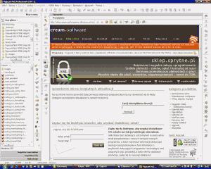 Pajączek 5.9.4 - edytor stron WWW - sprawdzenie dostępu do bezpłatnych wersji