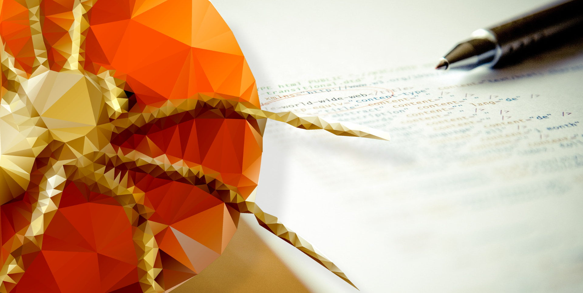 Pajączek - program do tworzenia stron internetowych w PHP, HTML, JavaScript