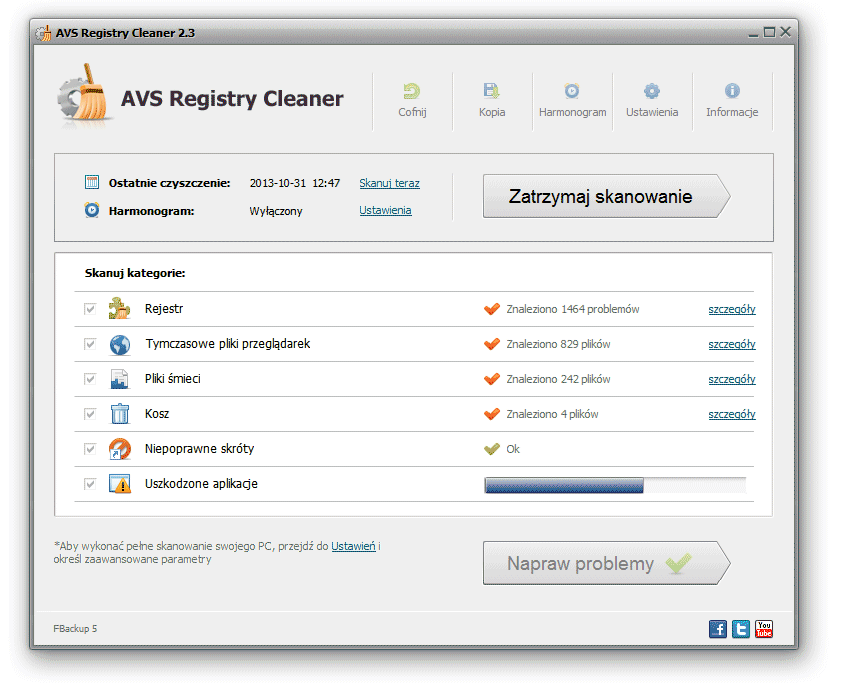 AVS Registry Cleaner - Dostęp do szczegółów skanowania