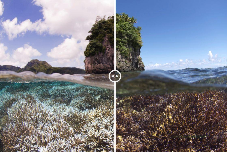 Porównanie zdjęć przed i po zmianach